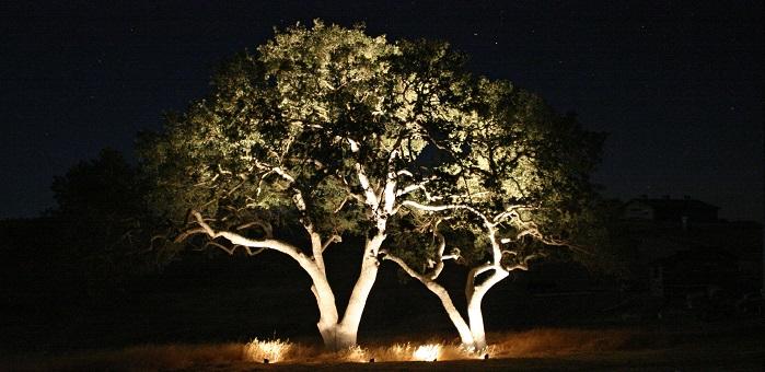 Outdoor Lighting Hire